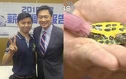 Kisah Viral PRT Bersihkan Kura-kura dapat Gaji Rp 36 Juta, Ternyata ini Fakta Sebenarnya