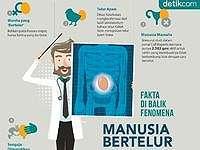 Infografis: Fakta-fakta di Balik Fenomena Manusia 'Bertelur'